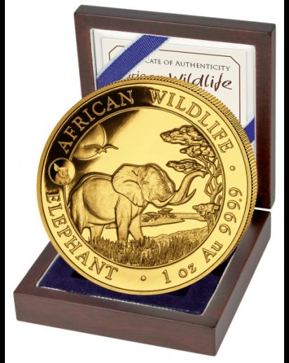 Somalia 2019   Elefant Privy  Schwein 1 oz Gold Auflage 100 Stück