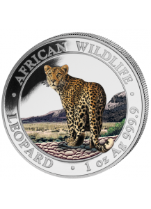 Somalia 2018  Leopard 1 oz Silber FARBE