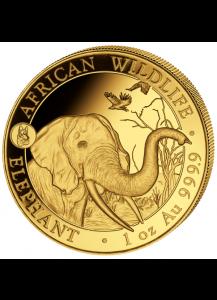 Somalia 2018   Elefant Privy Hund 1 oz Gold
