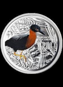 Südafrika 2018 Waterberg Biosphärenreservat Weißrückenreiher Silber 1 oz PP