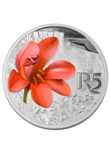 Südafrika 2018 Waterberg Biosphärenreservat Orange Tritonia Silber 1 oz PP