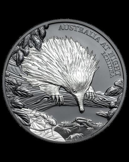 Niue 2020  Echidna - Ameisenigel Serie: Australien bei Nacht Silber 1 oz  Black Proof
