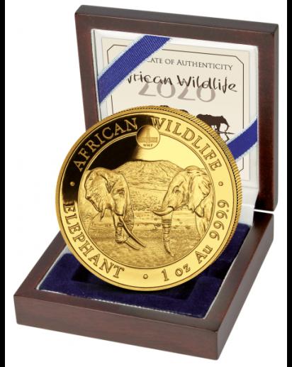 Somalia 2020   Elefant WMF Privy  ROTES RATHAUS  Gold 1 oz  Auflage 100 Stück