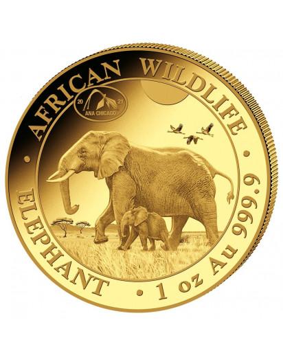 Somalia 2021   Elefant Privy  ANA  Gold 1 oz  Auflage 100 Stück