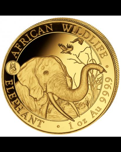 Somalia 2018   Elefant Privy Mark Hund 1 oz Gold