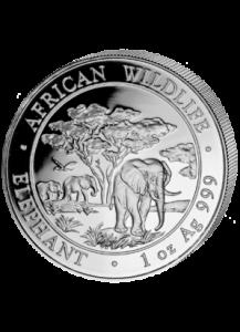 Elefant 2012 Somalia 1 oz Silber