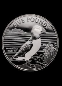 Alderney 2019 Puffin - Papageientaucher Silber 1 oz