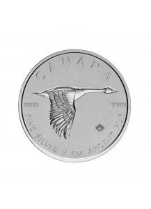 Canada 2020  GOOSE - WILDGANS Silber 2 oz