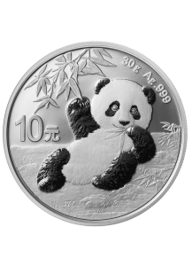 China 2020  Panda  Silber 30 g