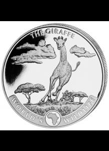 Congo 2019   GIRAFFE - World`s Wildlife Serie Silber 1 oz - Kongo