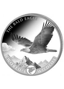 Congo 2021 Bald Eagle - Weisskopfseeadler  - World`s Wildlife Serie Silber   1 oz - Kongo