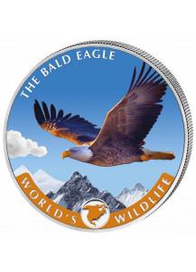 Congo 2021 Bald Eagle - Weisskopfseeadler  - World`s Wildlife Serie Silber  FARBE  1 oz - Kongo