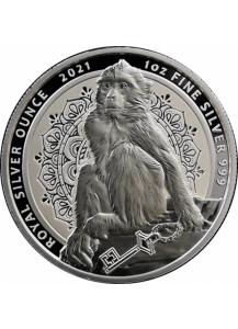 Gibraltar 2021  BERBERAFFE   Silber 1 oz