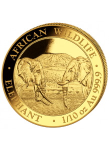 Somalia 2020  Elefant  Gold 1/10 oz