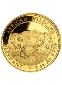 Somalia 2020  Elefant  Gold 1 oz