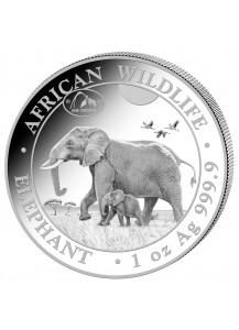 Somalia 2021  Elefant Privy  ANA   Chicago  1 oz Silber