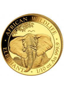 Somalia 2021  Elefant  Gold 1/10 oz