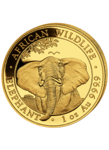 Somalia 2021  Elefant  Gold 1 oz