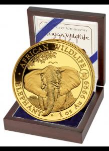 Somalia 2021   Elefant Privy  Ochse 1 oz Gold Auflage 100 Stück