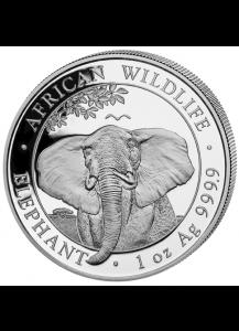 Somalia 2021  Elefant 1 oz Silber