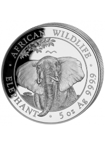 Somalia 2021  Elefant  5 oz Silber