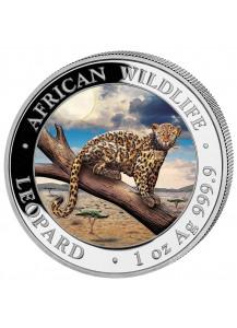 Somalia 2021  Leopard 1 oz Silber FARBE