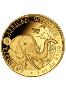 Somalia 2018   Elefant Privy Mark Hund 1 oz Gold