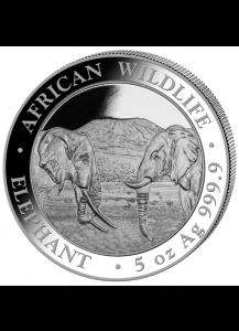 Somalia 2020  Elefant  5 oz Silber
