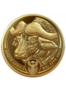 Südafrika 2021  BIG FIVE - BÜFFEL Gold 1 oz polierte Platte