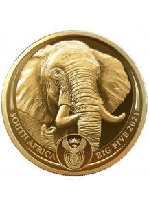 Südafrika 2021  BIG FIVE - ELEFANT Gold 1 oz polierte Platte